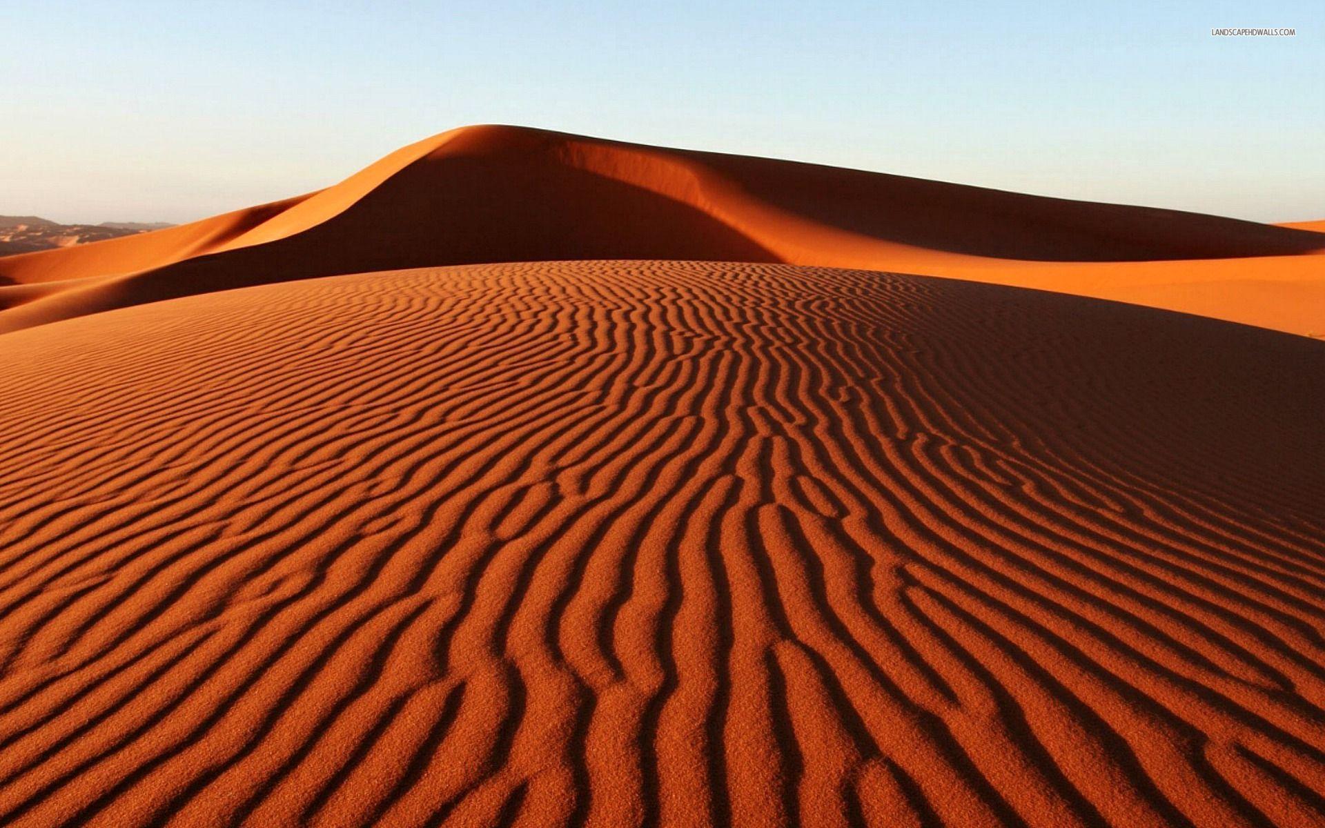 62+ Sand Dunes Wallpaper on WallpaperSafari