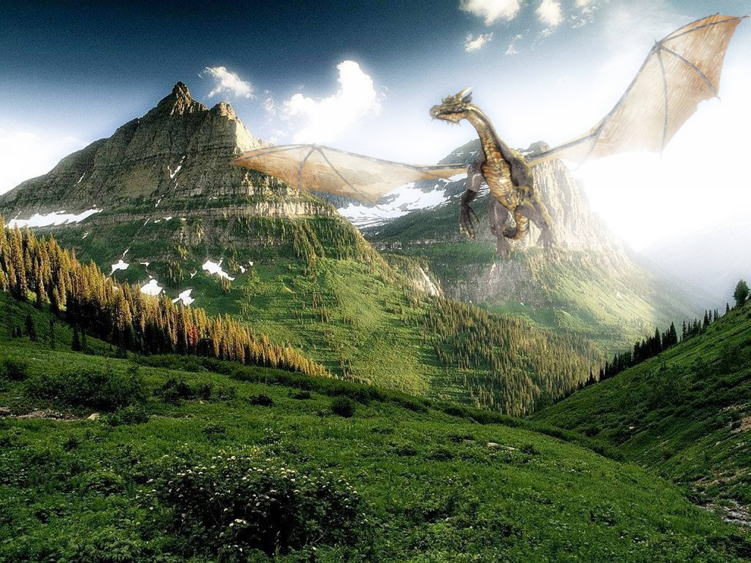 Flying Dragon Wallpapers 2560x1920