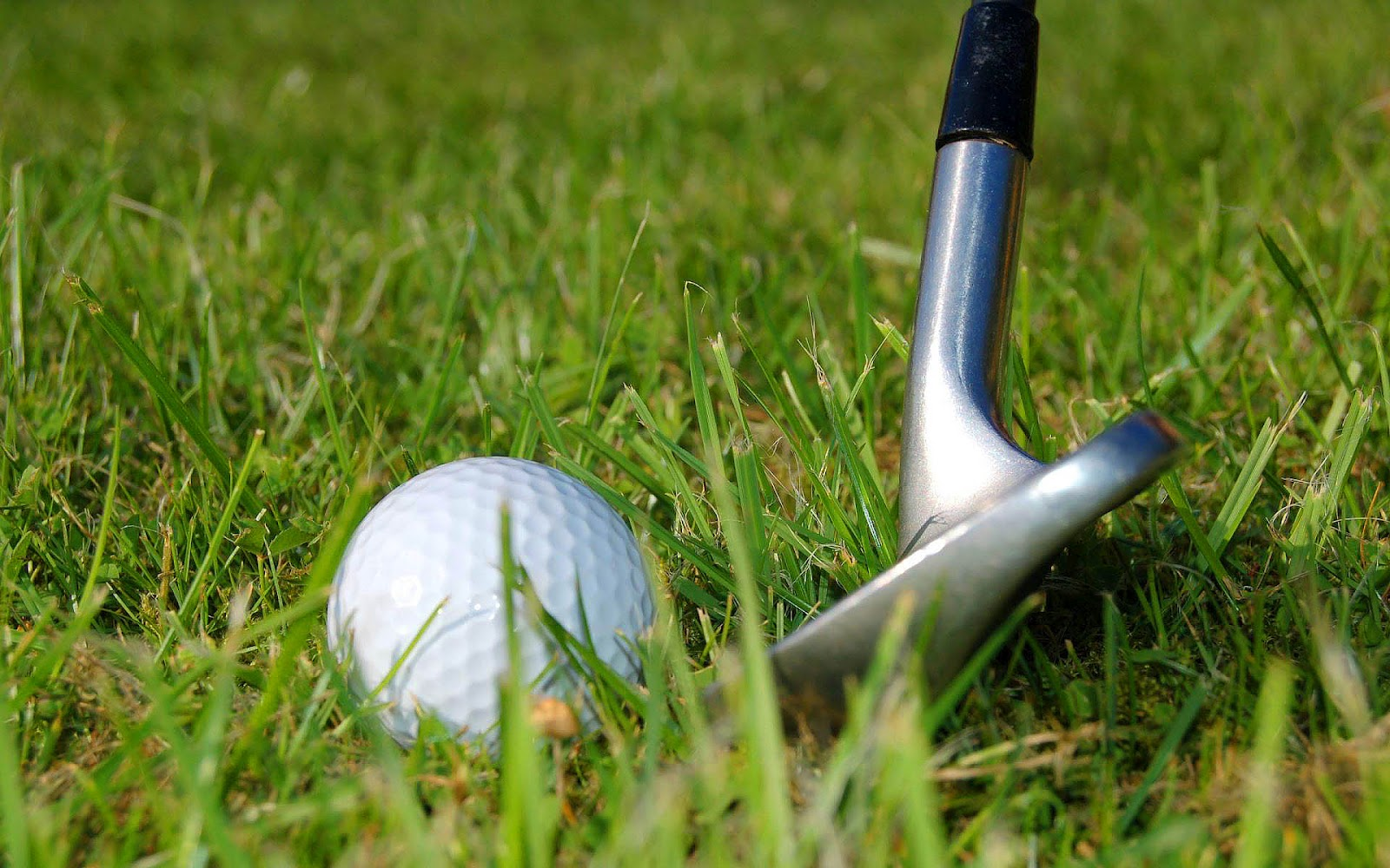 спорт sports гольф Golf  № 3310307 без смс