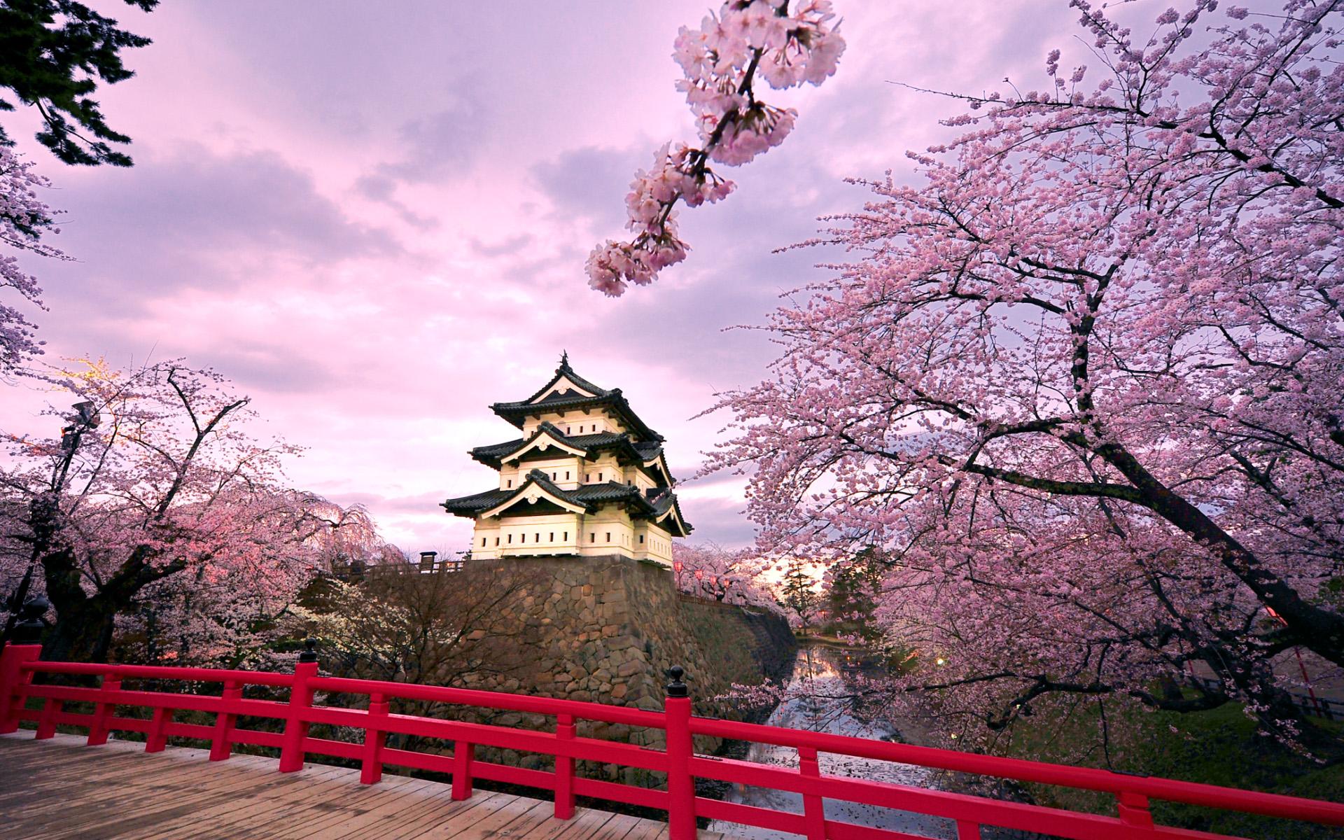 Hirosaki Castle Japan Wallpapers HD Wallpapers 1920x1200