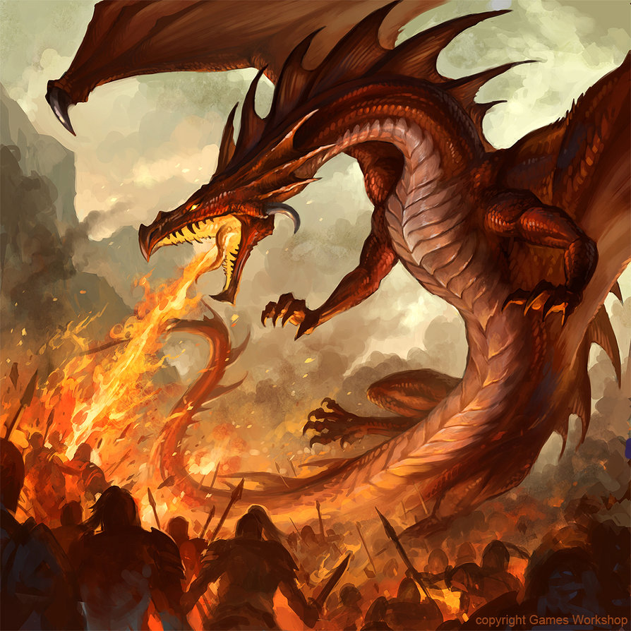 Fire Dragon Wallpapers   500 Collection HD Wallpaper 894x894