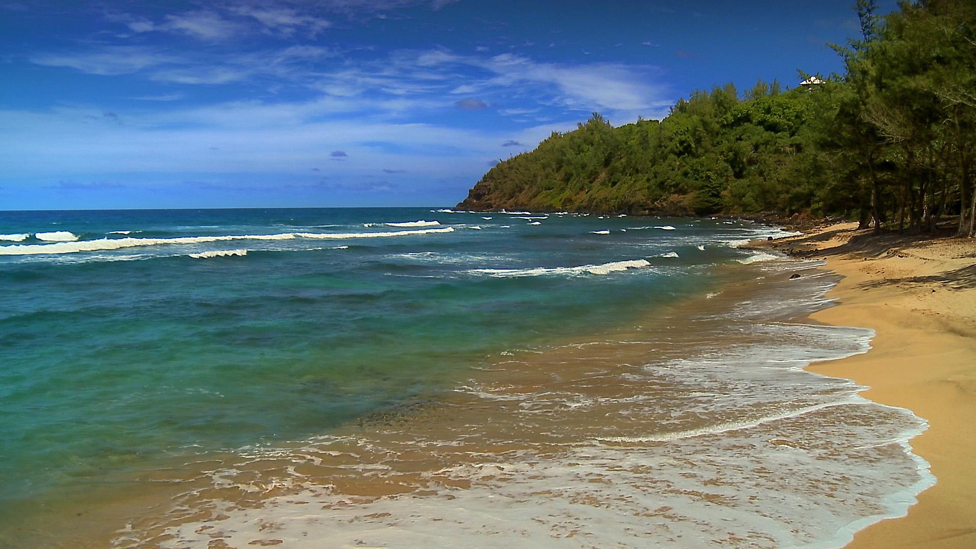 Hawaii Beaches wallpaper 59541