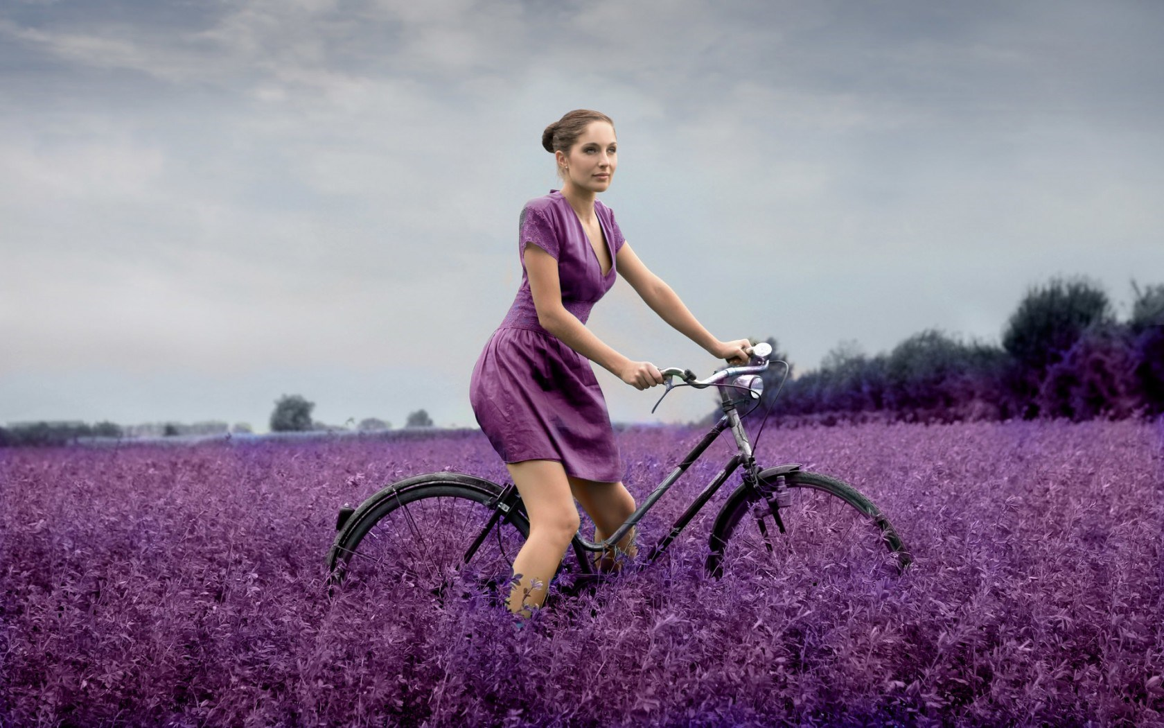 desktop wallpaper bicycles and flowers wallpapersafari. Black Bedroom Furniture Sets. Home Design Ideas