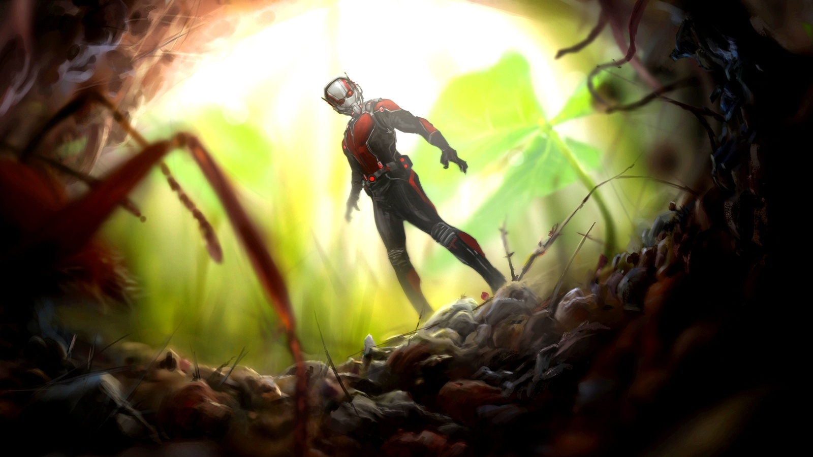 Ant Man 2015 Artworks Wallpapers   1600x900   288520 1600x900
