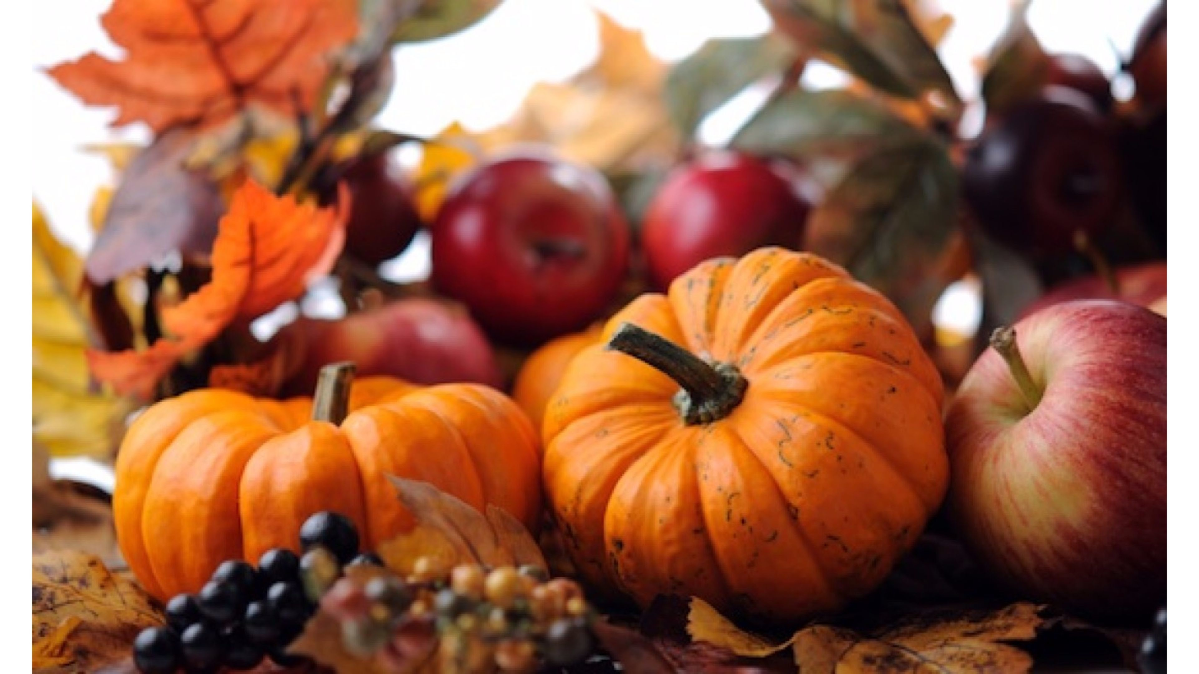 Fall Wallpaper Backgrounds With Pumpkins 55 images 3840x2160
