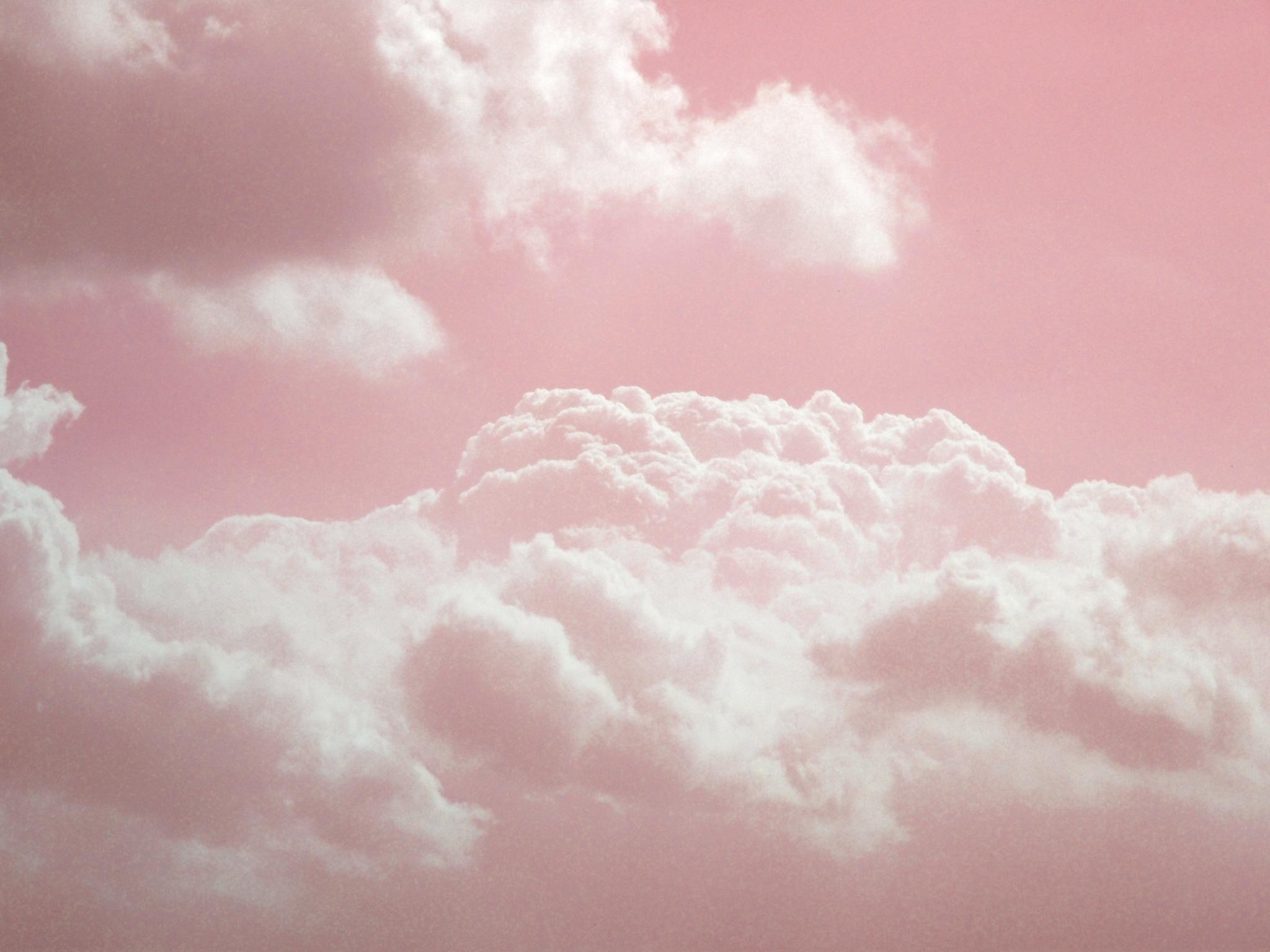 [45+] White and Pink Wallpaper on WallpaperSafari