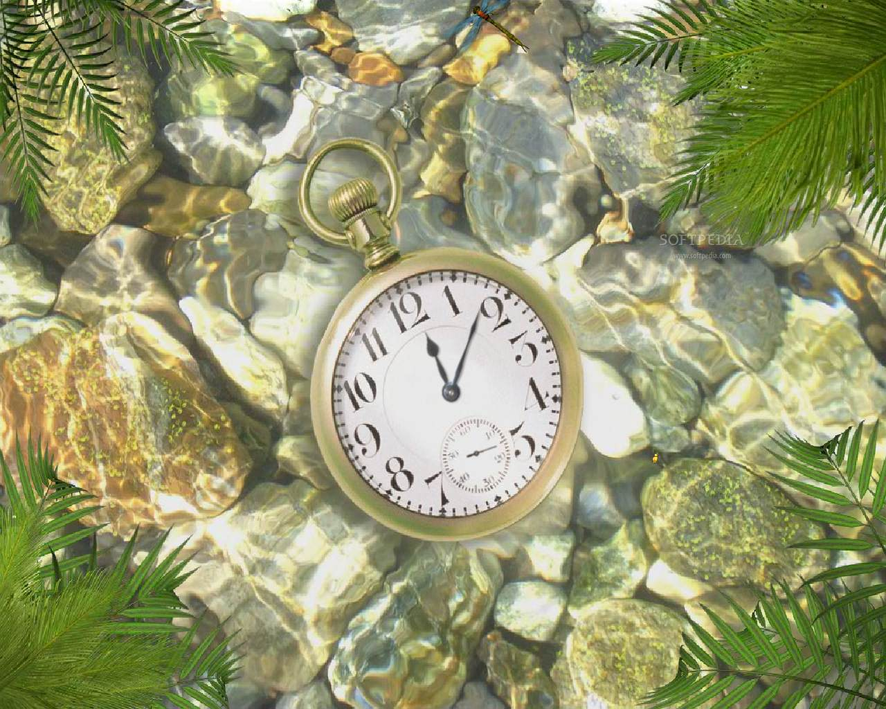 Underwater Clock   Animated Wallpaper   This is the image that will be 1280x1024