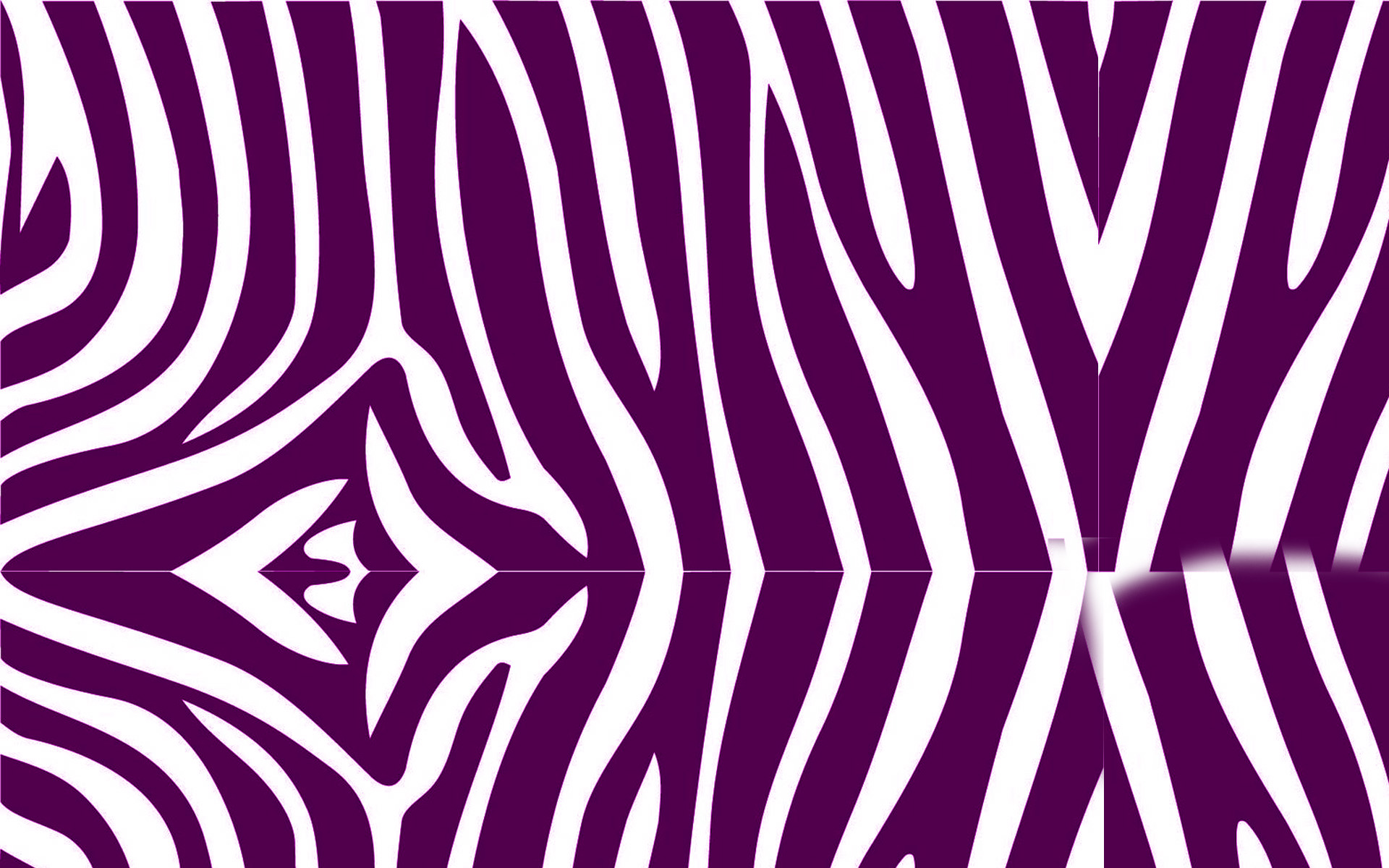 Zebra Print Wallpaper 3D Abstract HD Wallpapers 1920x1200
