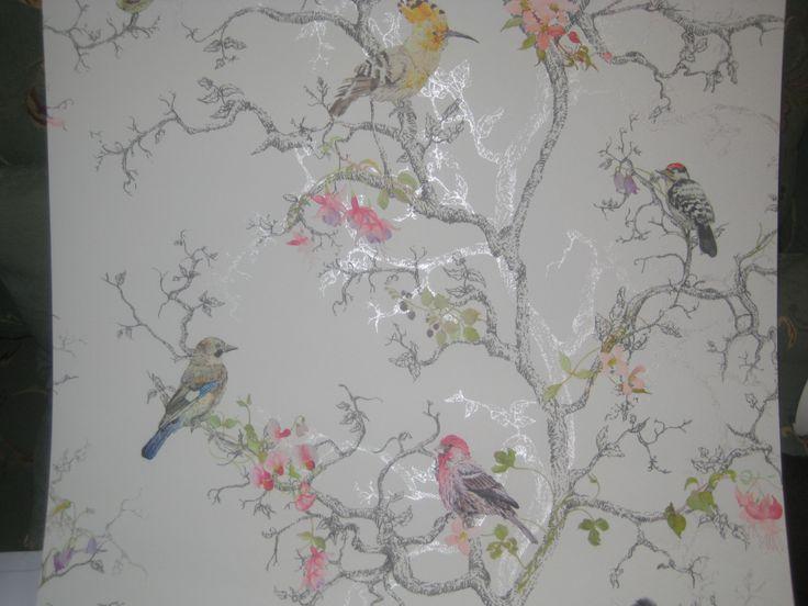 48 B Q Wallpapers On Wallpapersafari