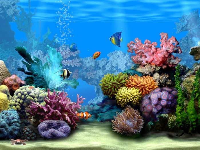 Download Animated Desktop Wallpaper Download   Animated Desktop 699x524