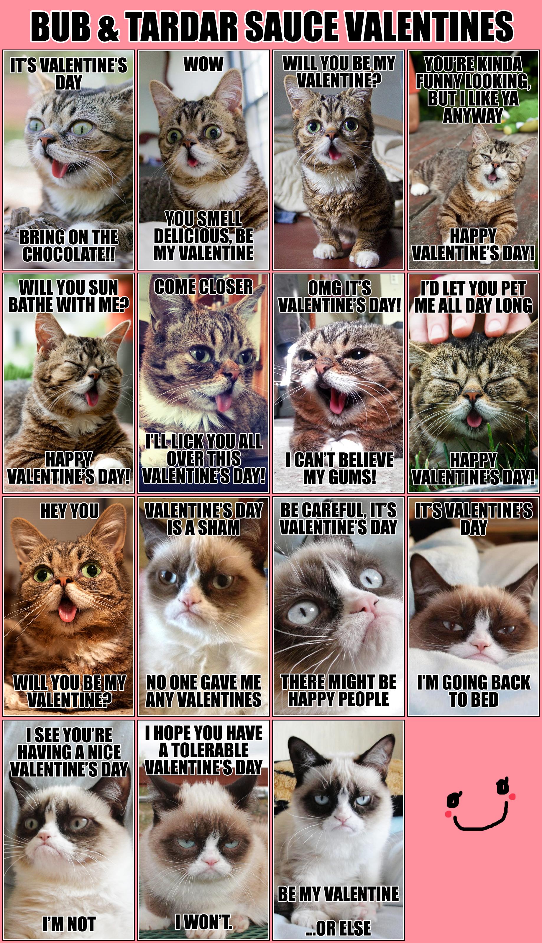 Grumpy Cat Valentine Images TheCelebrityPix 1838x3200