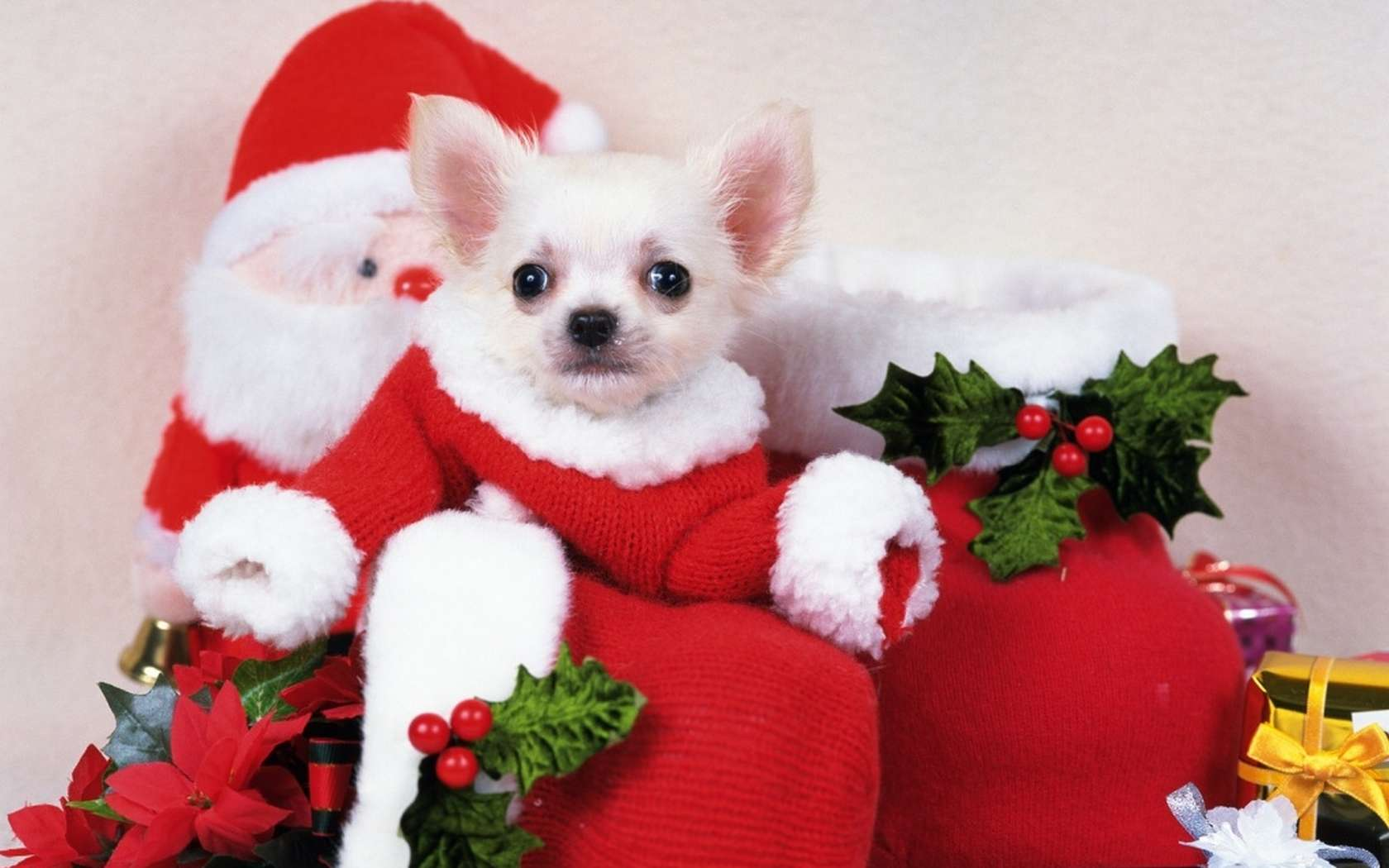 Cute Christmas   Backgrounds Wallpapers Pictures Pics Photos 1680x1050