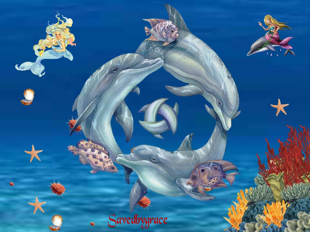 Dolphins wallpapers and images   wallpapers pictures photos 1024x768
