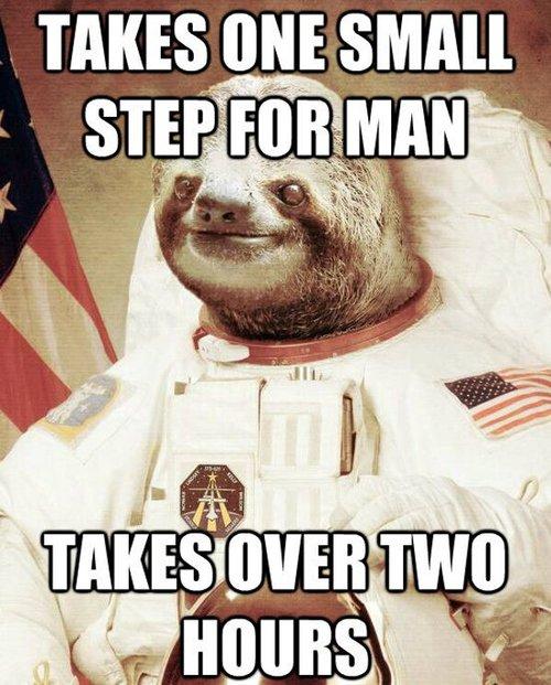 slothstronaut astronaut meme lol 500x621