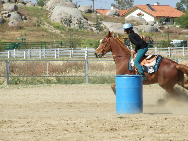 Barrel Racing With Twinkie   Horses Photo 18744544 720x540