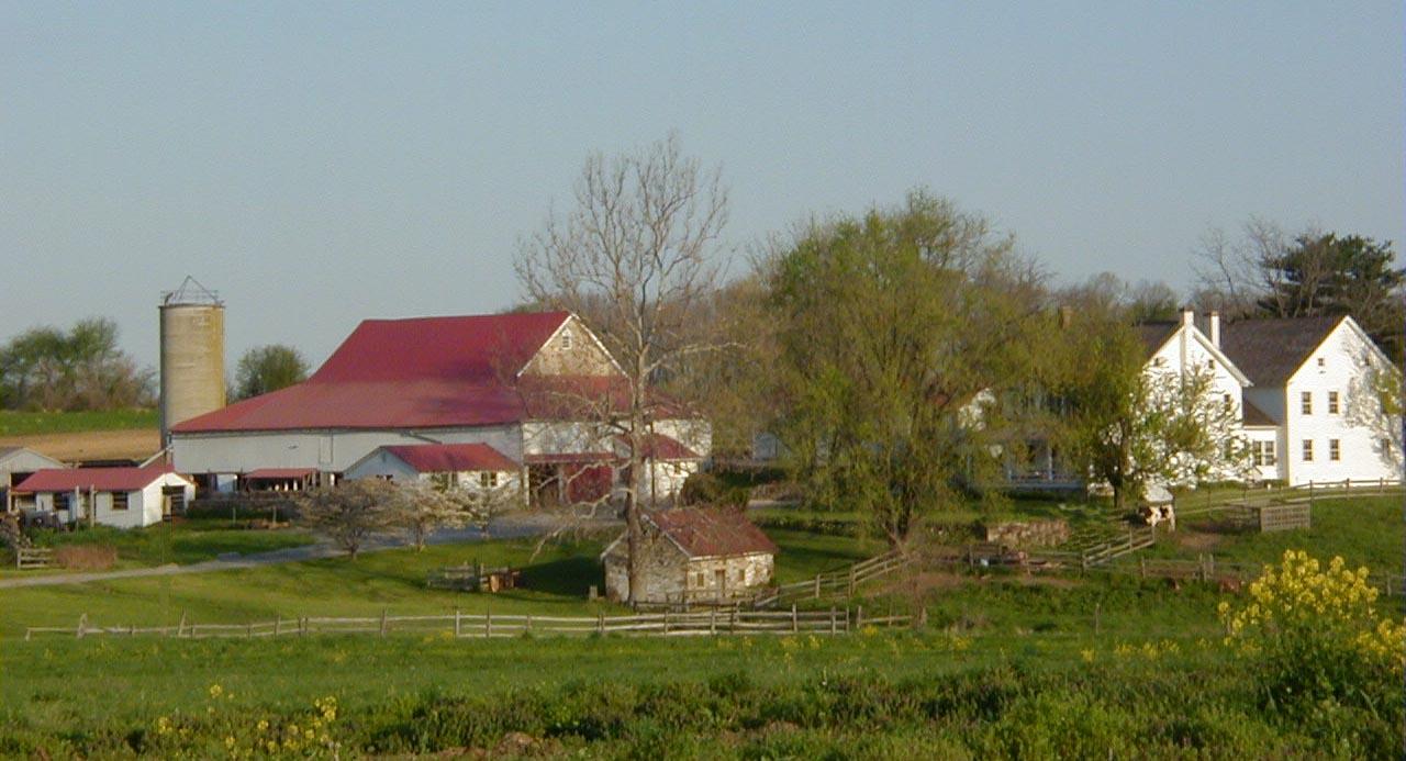 Rosanne Dorsey farm background 1280x693