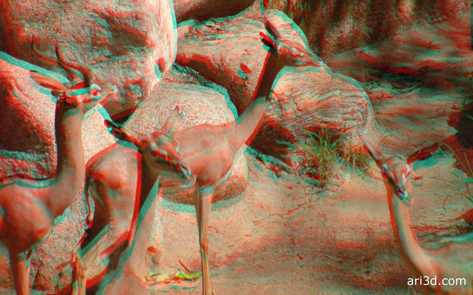 buivasysw Anaglyph Wallpaper 1920x1200