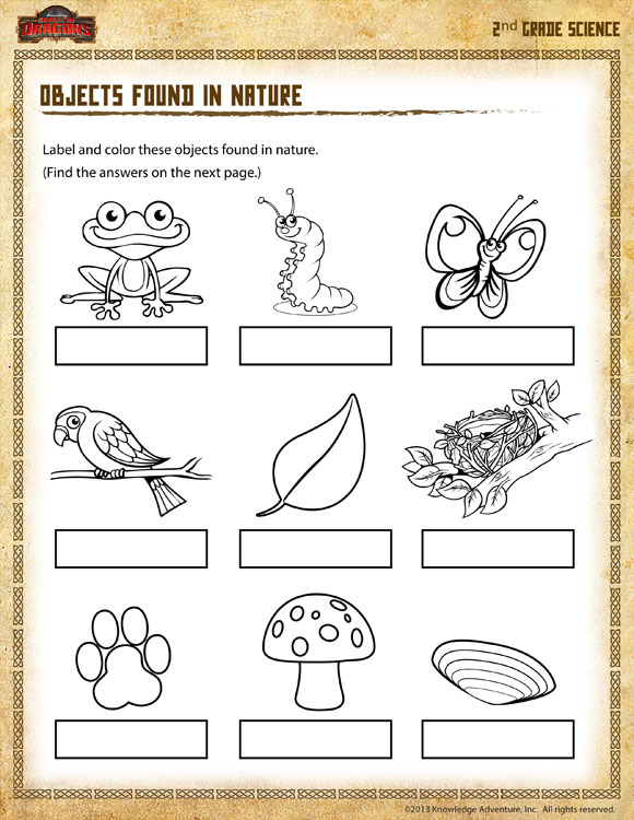 Printables Science Worksheets 2nd Grade science worksheets for 2nd grade davezan nature of worksheet davezan