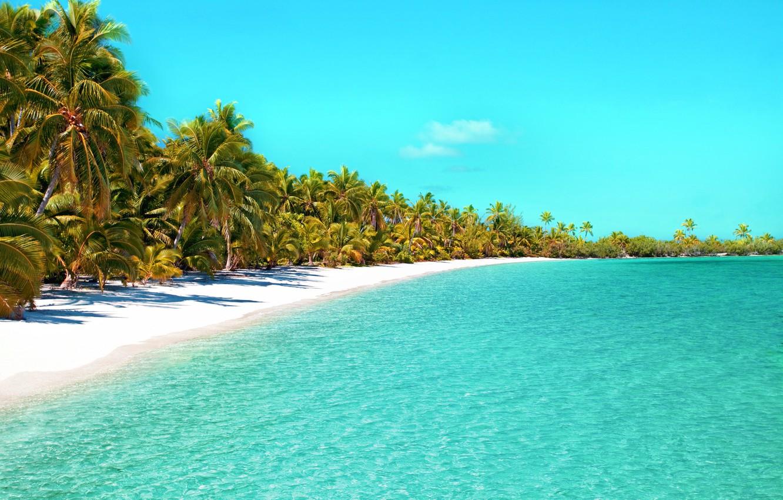 Wallpaper beach palm tree tropical Beach ocean beach beautiful 1332x850