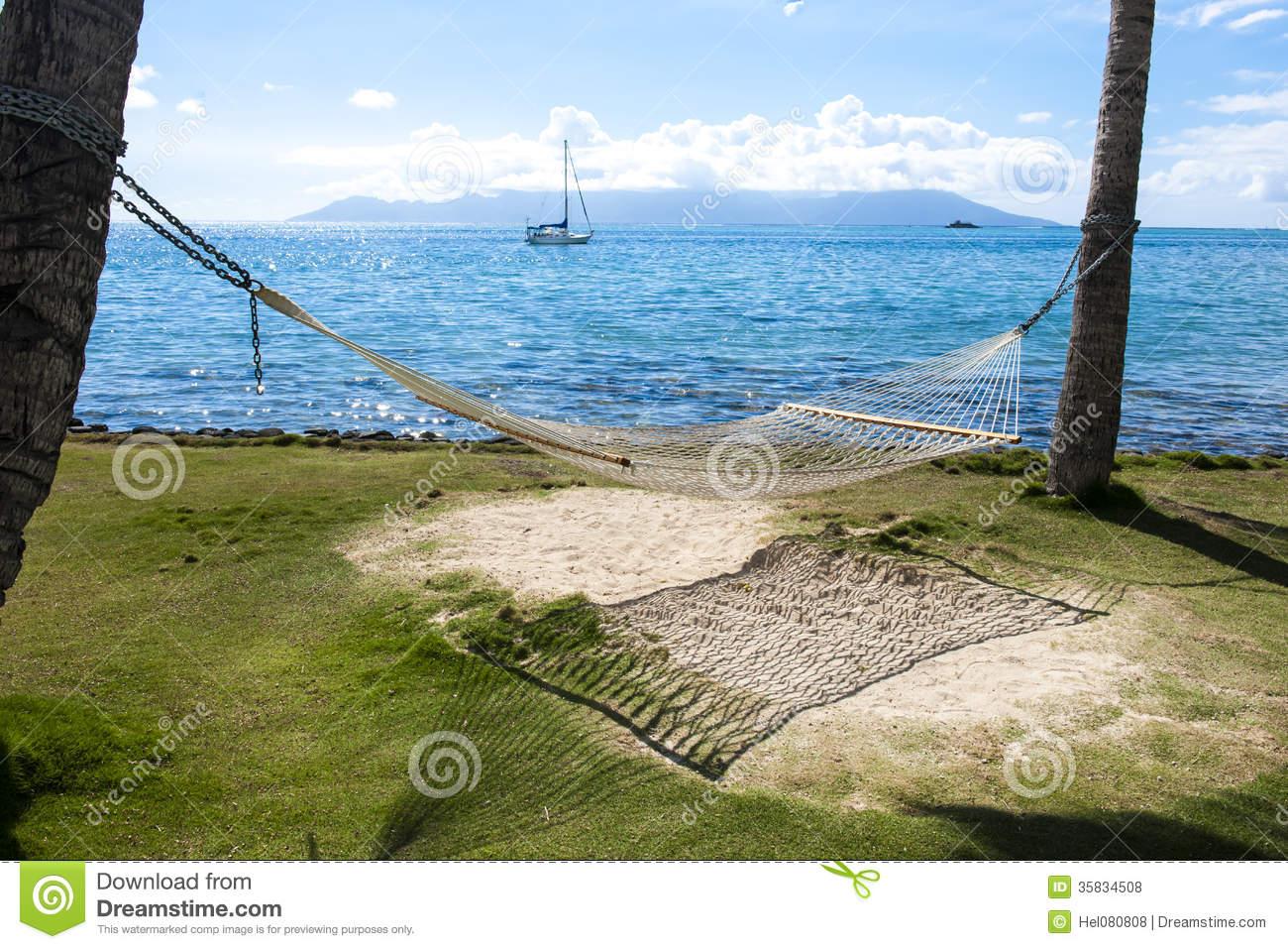 Caribbean Beach Hammock And Palm Trees In Mayan Riviera Mexico 1300x957