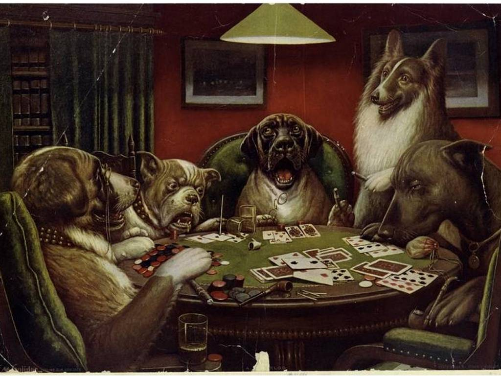 Funny Animals Playing Cards Wallpaper HD 19 Wallpaper with 1024x768 1024x768
