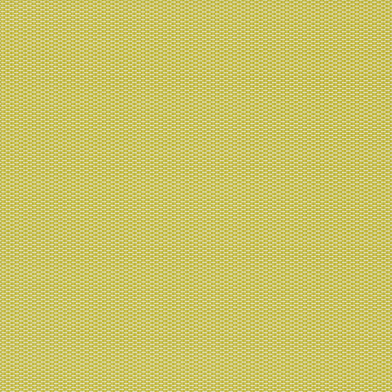 Harlequin Stitch 110339 Zest wallpaper from the Momentum II 800x800
