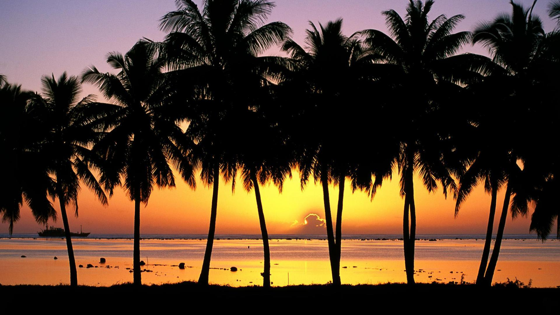 Download Wallpaper Palm Trees at Sunset Cook Islands 1920 x 1080 1920x1080