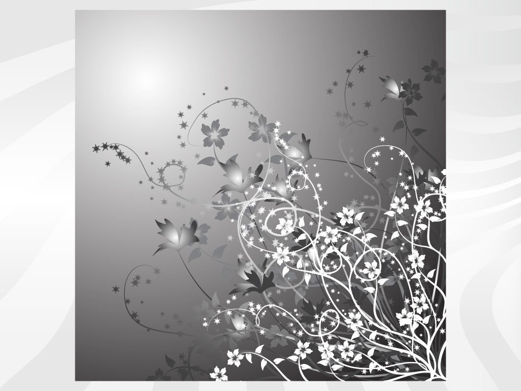 of silver and white flowers set on an atmospheric silver background 1024x768