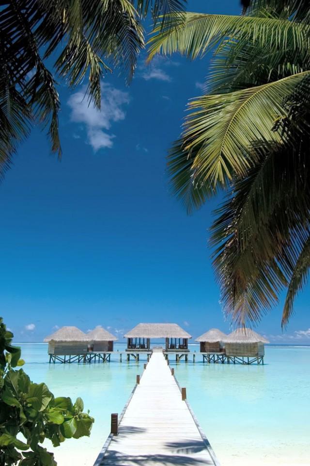 Tropical resort Wallpaper for iPad and Galaxy Tab   Tablet iPad 640x960