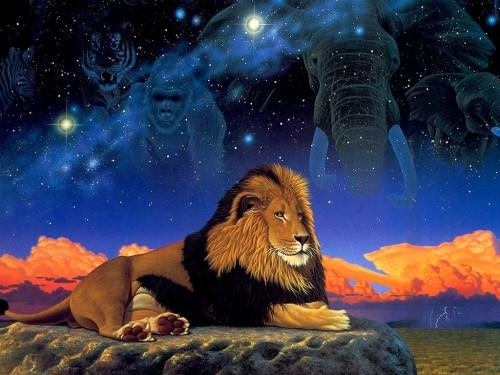 Lion Screensaver Screensavers   Download Lion Screensaver Screensaver 500x375