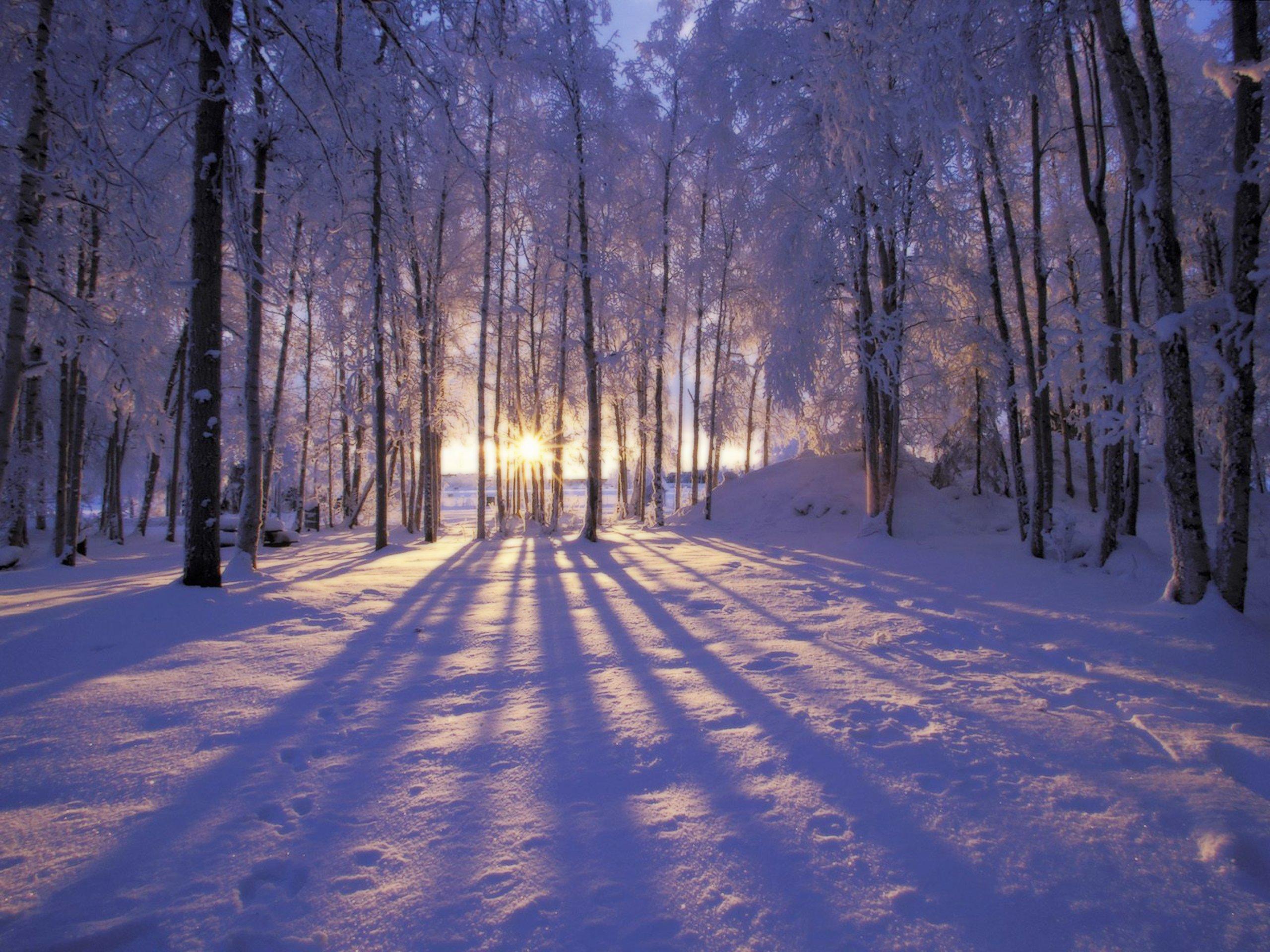 Christmas Winter Scenes Desktop Wallpaper 1 2560x1920