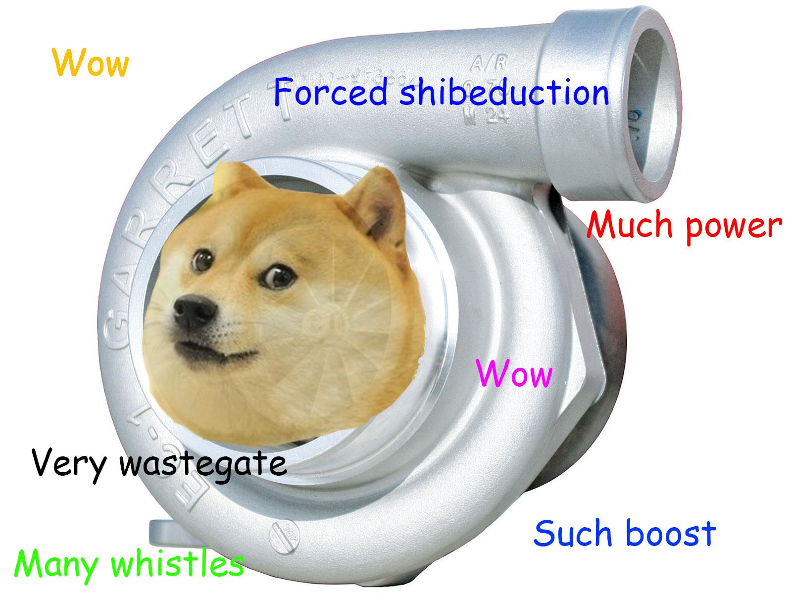 Doge Meme HD Wallpaper 1600x1200