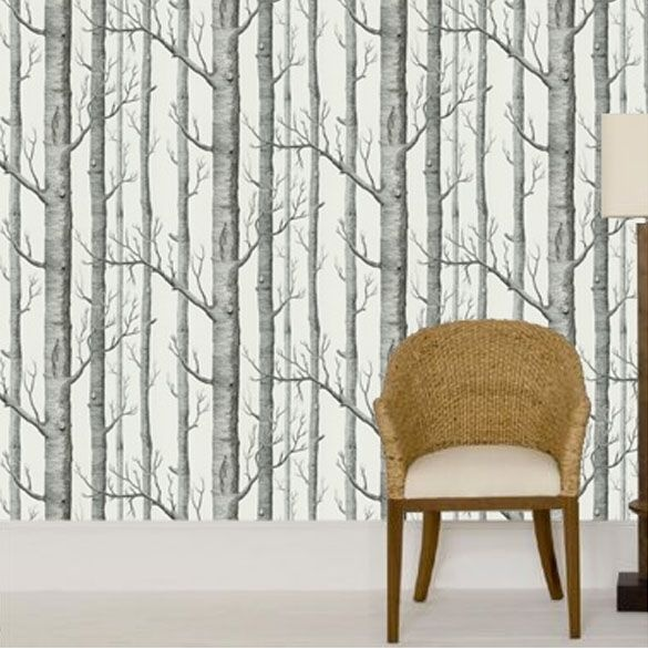 cole and sons birch tree wallpaper My Style Pinterest 585x585