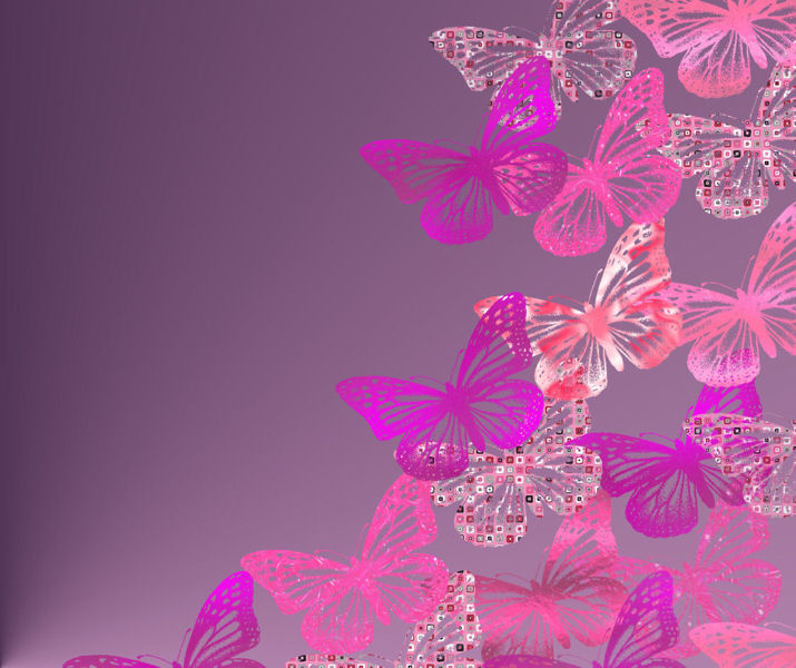 animated butterfly wallpaper   wallpapersafari