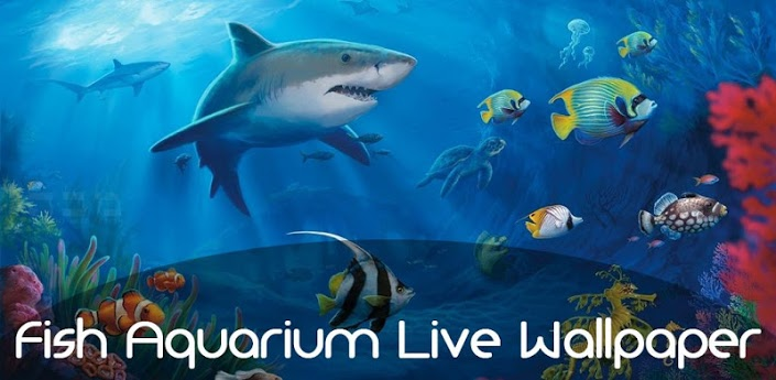 Fish Aquarium Live Wallpaper   Android Apps on Google Play 705x345