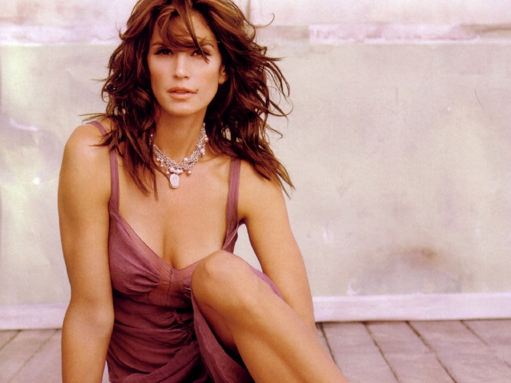 Cindy Crawford HQ Wallpapers Cindy Crawford Wallpapers   18876 1024x768