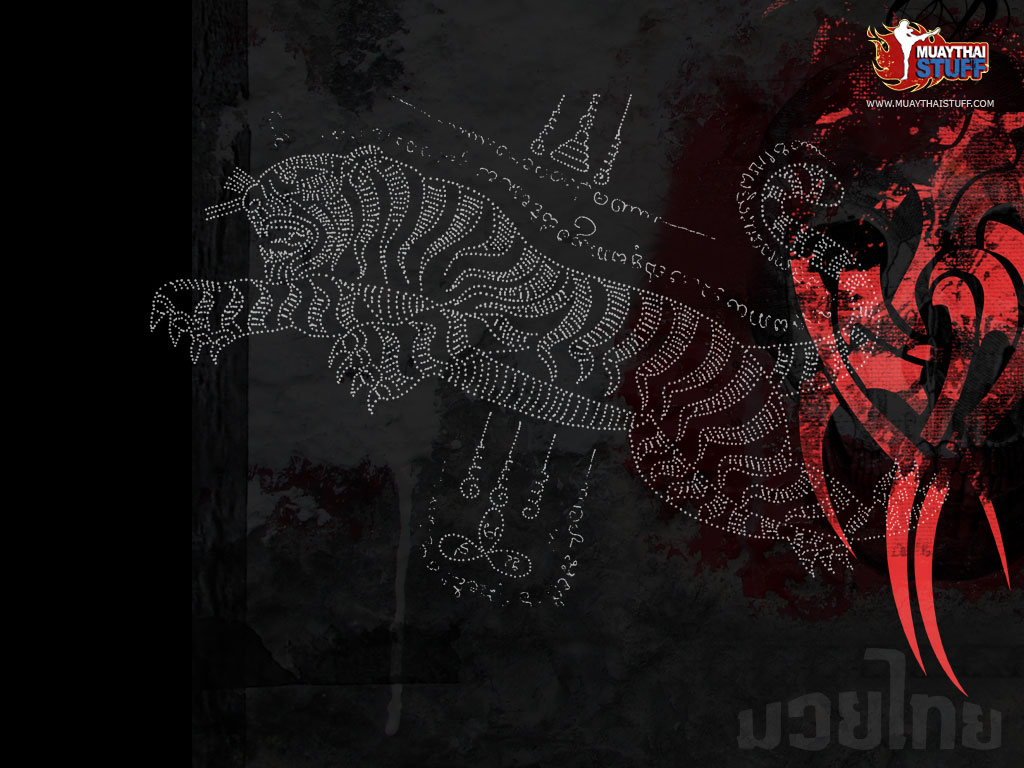 Free Download Muay Thai Wallpaper Collection Iii Archives