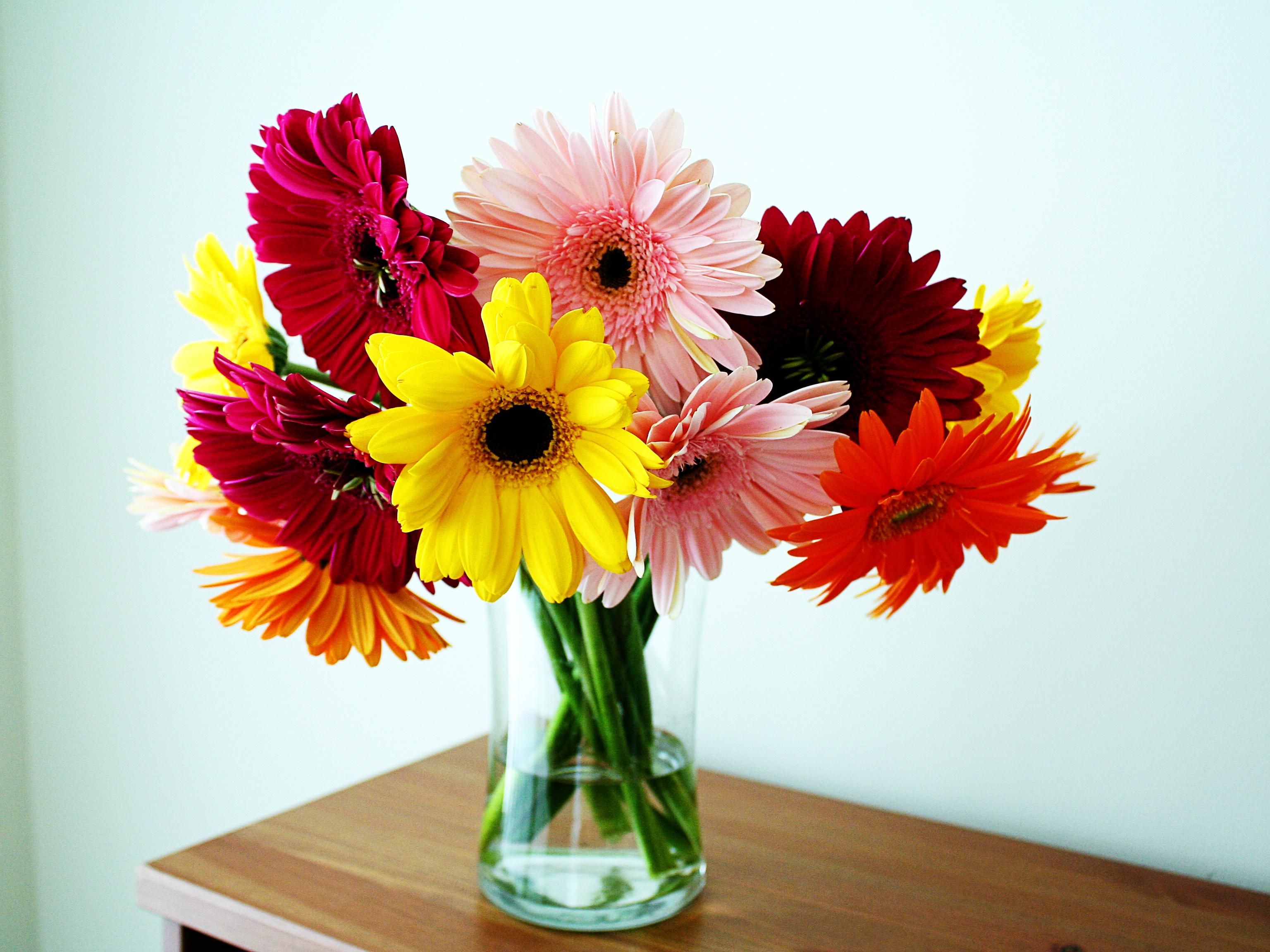 beautiful gorgeousflowers in vase wallpaper   ForWallpapercom 3072x2304