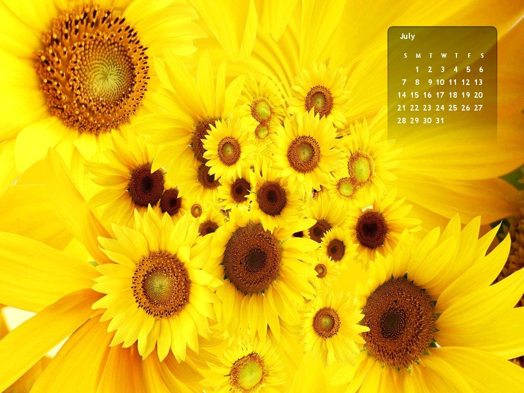 2013 July Month Calendar Wallpapers 1024x768