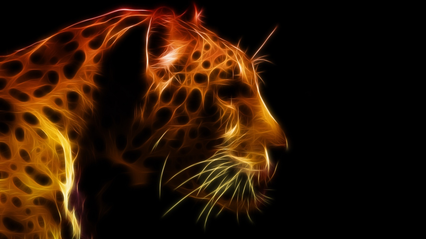 Cool Animal Wallpapers Hd