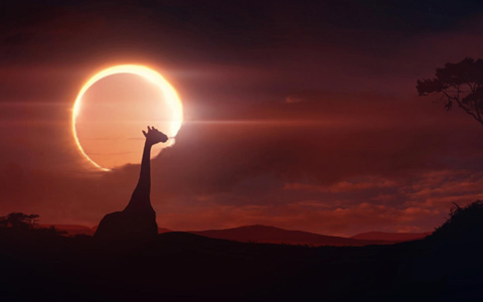 BROWSE solar eclipse wallpaper for iphone- HD Photo Wallpaper ...
