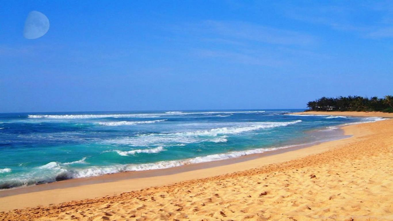from wallpaper hawaii beach wallpaper wallpaper hawaii beach 1366x768