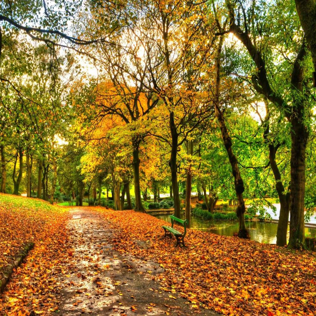 Autumn in nyc wallpaper wallpapersafari for Central park wallpaper