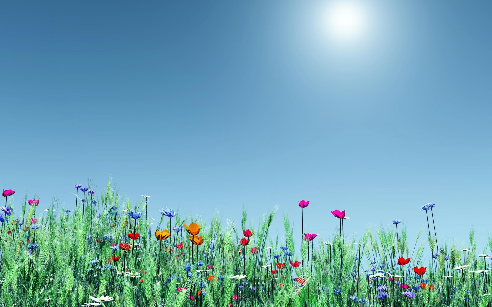 Spring Desktop Wallpaper Widescreen 56 images 1920x1200