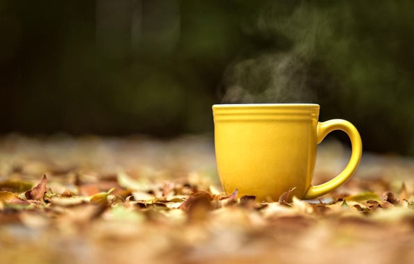 yellow steam hot tea tea leaves leaves yellow wallpapers mood 596x380