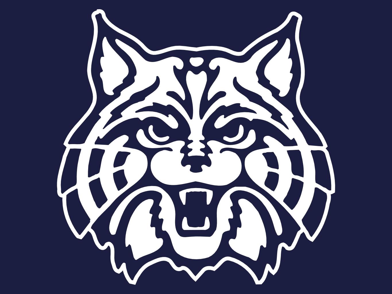 Arizona Wildcats 1365x1024