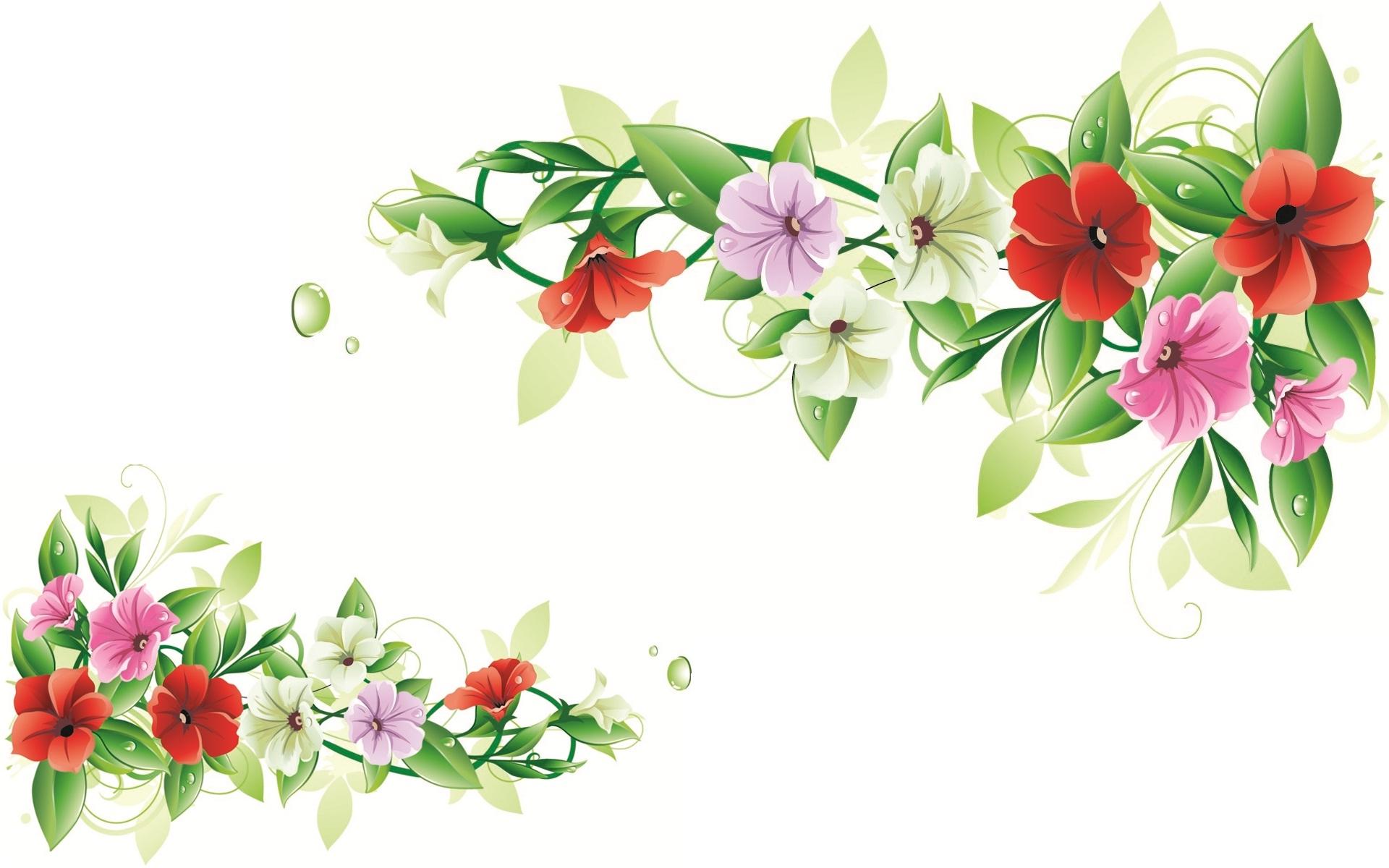 Flowers design frame set HD Wallpapers Rocks 1920x1200
