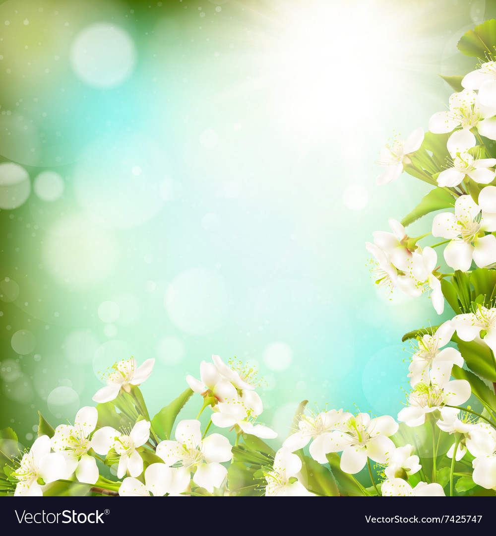 Spring border background EPS 10 Royalty Vector Image 1000x1080