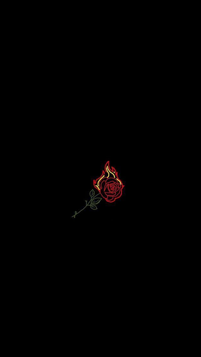 Pin on black rose 640x1136