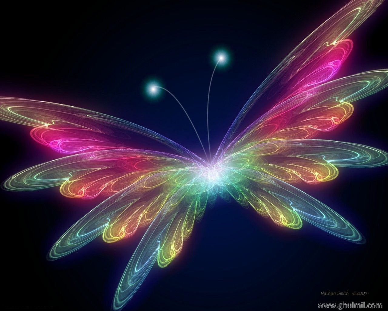 3D Butterfly wallpaper   Butterflies Wallpaper 31063788 1280x1024